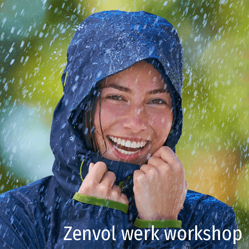 workshop zenvol werk
