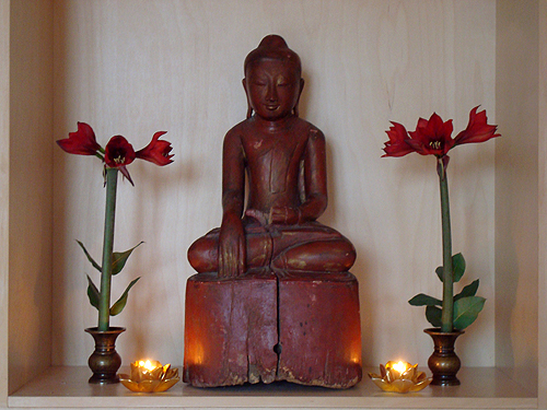 Zen.nl Rients Ritskes Boeddha amaryllus