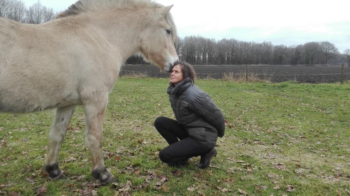zenweekend met paard