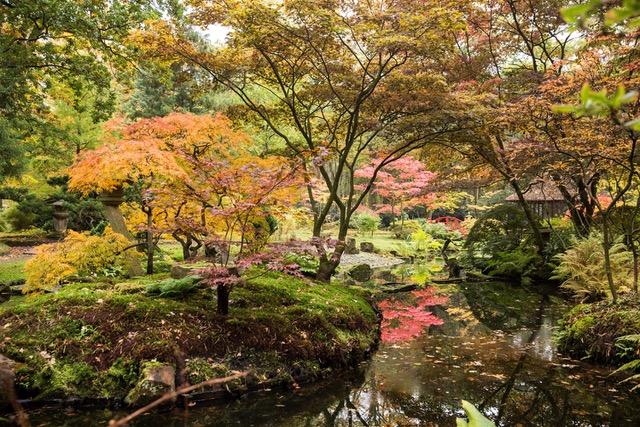 Japanse tuin landgoed Clingendael